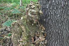 How To Disappear In The Wilderness: A Natural Camouflage Tutorial – Everything you needed to know about survival