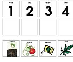 Rule Of 72 Worksheet Answers Planting A Seed Cutpaste Sequencing Activity  Sciencesocial  Printable Number Worksheets 1-20 Pdf with Th Words Worksheets Pdf A Quick Part Sequencing Worksheet For The Life Cycle Of A Plant From Multiplication And Division Word Problems Worksheets Excel