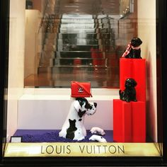 "LOUIS VUITTON, Rome, Italy, ""Everyone thinks they have the best dog... And none of them are wrong"", photo by Juanjo Insa, pinned by Ton van der Veer"