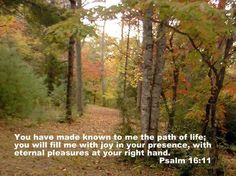 Psalms 16:11 Psalms 16 11, King Of Kings, Over The Years, Paths, Bible, Sayings, Scriptures, God, Books