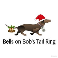 Bells on Bob's tail Dachshund Funny, Mini Dachshund, Funny Dogs, Cute Dogs, Funny Animals, Cute Animals, Daschund, Dachshund Rescue, Christmas Dog