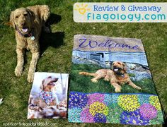 Spencer the Goldendoodle is sharing how to make quality, custom flags from @flagology. As well as giveaway two flags to two lucky readers. (Each winner will win one flag.)