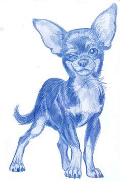 Animal Caricatures No. 6 by SuperStinkWarrior on deviantART
