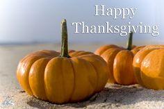 Happy Thanksgiving from Sandbridge Blue! #Sandbridge #SandbridgeBeach #VirginiaBeach