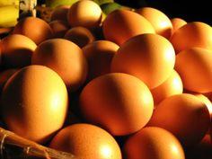Mitos e verdades sobre os ovos