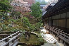 Rengejo-in is a charming traditional Buddhist Temple located in the misty forestof Mount Koya. You can pray with monks and try their traditional meals.