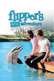 This item cannot be returned flipper-flippers new adventure (dvd/ws)-nla children/family Movies Playing, Kid Movies, Movies 2019, Movie Tv, Childhood Movies, Kids Adventure Movies, Adventure Time Art, Family Adventure, Adventure Tattoo