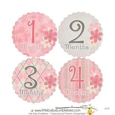 Baby Month Stickers Girls Monthly Baby by LittleBabyBumblebee
