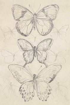 Art Drawings Sketches Simple, Pencil Art Drawings, Cool Sketches, Pretty Drawings, Tattoo Drawings, Fairy Drawings, Animal Sketches Easy, Tattoo Sketches, Sketch Drawing