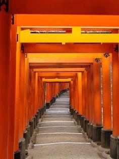 Fushimi Inari, #japan #kyoto