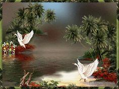 Animated Landscape, Animated Graphics, Beautiful Landscapes, Nature photo graphic-261-1.gif