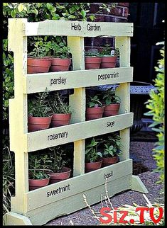 Pallet projects are fun and this is one of my favorite easy outdoor pallet projects. This DIY vertical pallet garden can be used for herbs, flowers, and more. Its the perfect pallet patio project. How to Make an Herb Garden from a Pallet by PinkWhen. Verticle Garden, Vertical Pallet Garden, Herb Garden Pallet, Pallets Garden, Herbs Garden, Diy Gardening, Organic Gardening, Container Gardening, Pallet Gardening