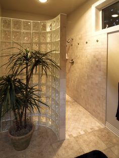 Doorless Shower Design, Pictures, Remodel, Decor and Ideas - page 19