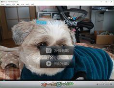 Macgo Windows Free Player 2.16.6  Macgo Windows Free Player--背景を変更--オールフリーソフト