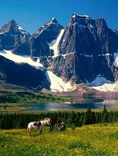 Solve cowboy in Jasper National Park jigsaw puzzle online with 273 pieces Wonderful Places, Beautiful Places, Usa Holidays, Jasper National Park, Sea To Shining Sea, O Canada, Canadian Rockies, Go Outside, Holiday Destinations