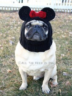 Dog Hat - Miss Mouse Hat. I gotta make this for my Minnie, Izzy and Tucker !
