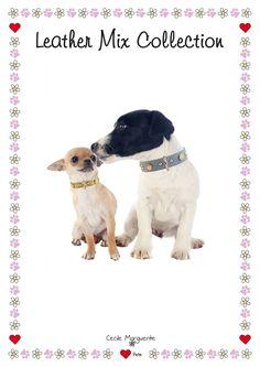 Collari e Guinzagli per Cani in Pelle Morbida con Borchie di forme diverse. Soft Leather Dog Collars and Leashes with different shape Studs.#cmlovepets #cutedogs #dogaccessories #luxurypet #animallovers #puppy #pets #petlovers #petslove #petslover #doglove #doglovers #accessoripercani #accessorilussopercani #petsaccessories #petsaccessory #cani #cane #dog #dogs #luxurydogaccessories #modacani #lussocani #leathercollar #collaricani #madeinitaly #studsdogcollar #studsdogcollars