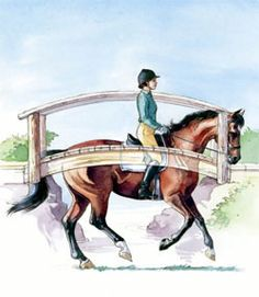 A Stronger Topline = Better Self-Carriage for Dressage   Olympian Sue Blinks discusses developing your horse's topline so it serves as a suspension bridge of musculature, making self-carriage possible. - See more at: http://www.equisearch.com/article/dt091103#sthash.jyLD7Awa.dpuf