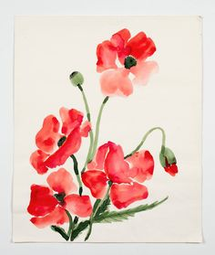 """Poppies, from the """"Florals"""" series 