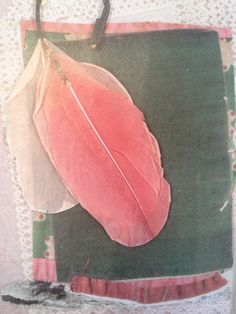 Mayle Fall 2003 lookbook