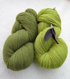 purple sage- green with vegetable dyes stain?