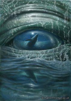 Whale Eye - Malcolm Horton