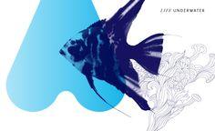 Brand Naming & Logo Design for Aqueus - Life Underwater