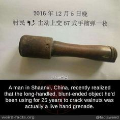 A man in Shaanxi, China. recently realized that the Iong-handled, blunt-ended object he'd been using for 25 years to crack walnuts was actually a live hand grenade. Weird Facts, Fun Facts, Awesome Facts, Crazy Facts, Best Funny Pictures, Cool Pictures, Funny Pics, Facebook Humor, Funny Video Memes
