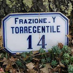 torregentile1