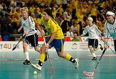 Innebandy - my sport!  Similar to floor hockey