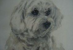 Original 'Dog' Pastel Painting £15.00
