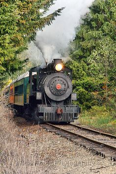 Elbe Train - Mount Rainier Scenic Railroad, Washington Steam engine in West Virginia The Writers Museum, just off the Royal Mile, Edinburgh. Locomotive Diesel, Steam Locomotive, Train Tracks, Train Rides, Train Trip, Plane Photography, Old Trains, Vintage Trains, Steam Engine