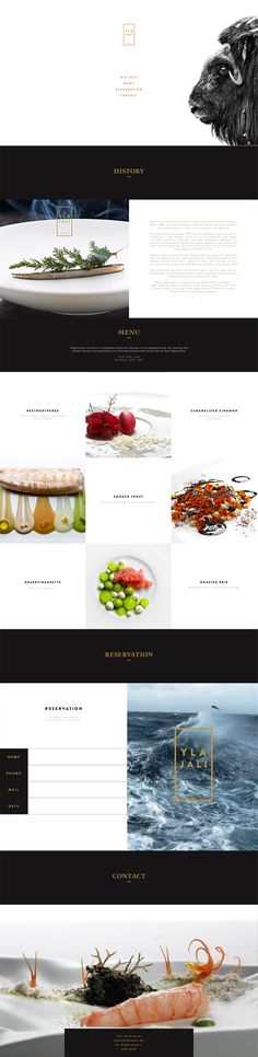 The minimal elements and colors in this web design allow the images to create a stunning color palette. #webdesign #photography #minimalist