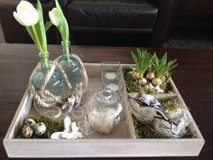 Dienblad en spulletjes van Action en plantjes en tulpen van de markt.