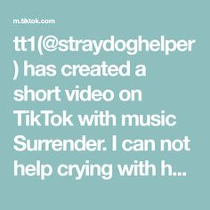 tt1(@straydoghelper) has created a short video on TikTok with music Surrender. I can not help crying with her, what's more I can do for her? #dog #pet #doglover #rescuedog #dogsoftiktok #fyp #pupy I Can Not, Rescue Dogs, Crying, Dog Lovers, Music, Musica, Musik, Muziek