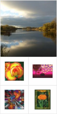 My Collection :Photography, Artists from around the world by Zazzle