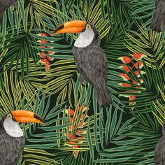 Toucan Green wallpaper by Graduate Collection