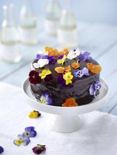 Suussasulavan suklainen sacherkakku on juhlapöydän kaunistus. Reseptin poimit täältä: http://www.dansukker.fi/fi/resepteja/sacherkakku.aspx #sacherkakku #kakku #suklaakakku #juhlat #resepti #ohje