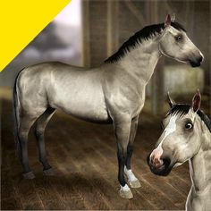 HD Horse Coats - White-Gray by LittleV - The Exchange - Community - The Sims 3