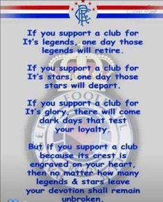 Rangers Football, Rangers Fc, Test Day, Follow Follow, Glasgow, Bears, Red, Blue, Bear
