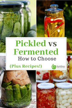 Pickled vs Fermented Foods: How to Choose (Plus Recipes!) Ever wonder which was better? Pickled food or fermented food? Click through to this post to find out! via Nutrition You Can Use Fermentation Recipes, Canning Recipes, Fermenting Jars, Probiotic Foods, Fermented Foods, Best Pickles, Nutrition, Kefir, Diy Food
