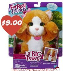 Hasbro FurReal Friends Li'l Big Paws Peek-a-boo Daisy Pet Cat Kitty Orange Toy for sale online Toys R Us, Kids Toys, Best Family Board Games, Cat Diary, Little Live Pets, Daisy, Peek A Boo, Real Friends, Animals
