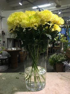 My Flower, Flowers, Making Life Easier, Glass Vase, Candles, Plants, Home Decor, Decoration Home, Room Decor