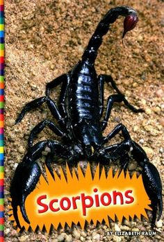 This photo-illustrated book for elementary readers describes the venomous scorpion. Readers learn how these desert animals use the stinger on their tails to defend against predators. Also explains the