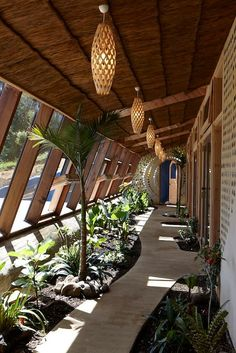Grand Designs Earthship Te Timatanga – Earth houses for Rent in Hikuai, Waikato, New Zealand – Garden images Nature Architecture, New Zealand Architecture, Concept Architecture, Residential Architecture, Architecture Design, Sustainable Architecture, Contemporary Architecture, Natural Building, Green Building