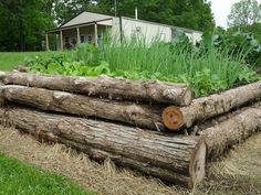 Build a Raised Garden Bed From Logs Log Raised Beds Building A Raised Garden, Raised Garden Beds, Raised Beds, Farm Gardens, Outdoor Gardens, Sloped Garden, Garden Projects, Diy Projects, Garden Planning