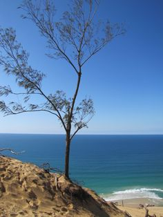 Gympie Cooloola Tourism · Discover The Gympie Cooloola Region Rainbow Beach, The Dunes, Tourism, Camping, Abundance, Water, Outdoor, Turismo, Campsite