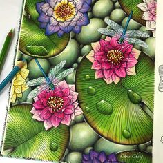 """489 Likes, 15 Comments - Chris Cheng (@colorvscolour) on Instagram: """"Water Lilies Full coloring video, link in my bio @colorvscolour . #daydreams #dagdrömmar…"""""""