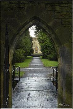cong abbey, co mayo, ireland