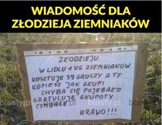 Polish Memes, Weekend Humor, Good Mood, Have Time, Poland, Maine, Entertainment, Funny, Happy